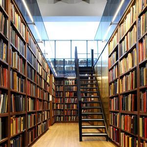 Библиотеки Брянска