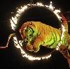 Цирки в Брянске